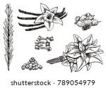 ink hand drawn style set of... | Shutterstock . vector #789054979