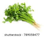 fresh coriander leaves on white ...   Shutterstock . vector #789058477
