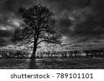 Woodend   Northamptonshire  Uk