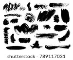 set of bushy different black... | Shutterstock .eps vector #789117031