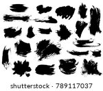 set of bushy small black... | Shutterstock .eps vector #789117037
