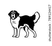 st. bernard dog   isolated... | Shutterstock .eps vector #789124417