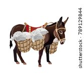 donkey with a heavy load.... | Shutterstock .eps vector #789129844