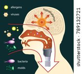 scheme of penetration of... | Shutterstock .eps vector #789132721