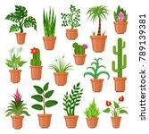 house pot plants. green indoor... | Shutterstock .eps vector #789139381