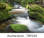 A small creek flowing through moss covered  trees and rocks.