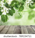 beautiful spring background... | Shutterstock . vector #789154711