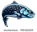 realistic drawing of the... | Shutterstock . vector #789183205