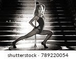 beautiful brunette dancing on a ... | Shutterstock . vector #789220054