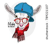Vector White Goat With Red...
