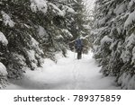 view of snow covered conifer... | Shutterstock . vector #789375859
