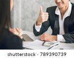 boss business man employer... | Shutterstock . vector #789390739
