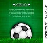 soccer ball background.... | Shutterstock .eps vector #789428239