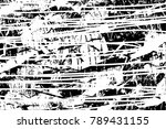 abstract grungy black and white ... | Shutterstock .eps vector #789431155