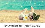 spa still life with herbal... | Shutterstock . vector #789436789