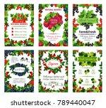 fresh natural berries posters...   Shutterstock .eps vector #789440047