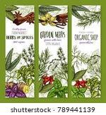 herbs and spices seasonings... | Shutterstock .eps vector #789441139