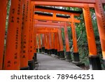 kyoto japan   november 11  2017 ... | Shutterstock . vector #789464251