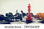 red in the middle black chess... | Shutterstock . vector #789556309