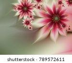 grafic design for business... | Shutterstock . vector #789572611