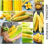 collage with fresh delicious...   Shutterstock . vector #789602389