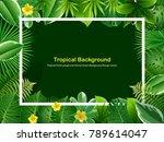 tropical island circlet of... | Shutterstock .eps vector #789614047