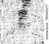 grunge black and white pattern. ... | Shutterstock . vector #789645277