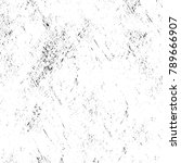 grunge black and white pattern. ... | Shutterstock . vector #789666907
