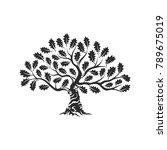 huge and sacred oak tree... | Shutterstock .eps vector #789675019