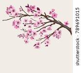 sakura. pink cherry blossom... | Shutterstock .eps vector #789691015
