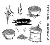 vector rice hand drawn sketch . ... | Shutterstock .eps vector #789695161