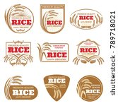 paddy rice vector labels.... | Shutterstock .eps vector #789718021
