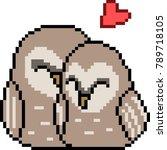 vector pixel art bird couple... | Shutterstock .eps vector #789718105