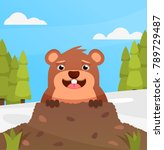 happy smiling groundhog on... | Shutterstock .eps vector #789729487