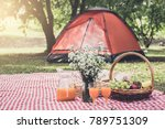 healthy food and accessories...   Shutterstock . vector #789751309