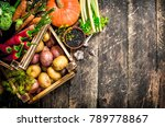 Organic Food. Harvest Of Fresh...