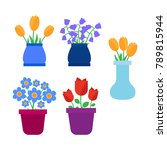 spring flowers. cute spring... | Shutterstock . vector #789815944