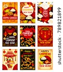 happy chinese new year greeting ... | Shutterstock .eps vector #789821899