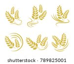 agriculture wheat logo template ... | Shutterstock .eps vector #789825001