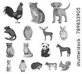 realistic animals monochrome... | Shutterstock .eps vector #789833905