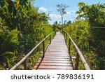 old wooden bridge walkway in...   Shutterstock . vector #789836191