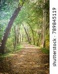 a walking and bike path through ... | Shutterstock . vector #789845119