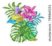 exotic flowers  palm leaves ... | Shutterstock . vector #789869251
