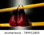 pair of red boxing gloves hangs ... | Shutterstock . vector #789912805