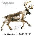caribou. reindeer watercolor... | Shutterstock . vector #789922219