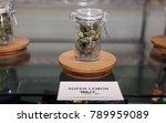 los angeles  california   usa... | Shutterstock . vector #789959089
