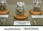 los angeles  california   usa... | Shutterstock . vector #789959095
