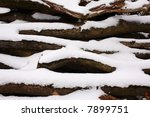 Stack Of Cut Logs Covered With...