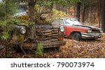 a car and a truck with a tree... | Shutterstock . vector #790073974