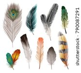 bird realistic feathers set in... | Shutterstock .eps vector #790087291